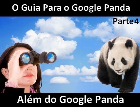 google_panda_o_guia_parte4.jpg