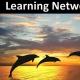 Redes Pessoais De Aprendizagem: Por Que Parceiros São Melhores Que Colegas De Classe