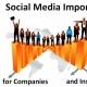 Social Media: O Que São E Por Que São Tão Importantes Para Qualquer Organização